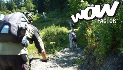 Ciclo tour nel Parco dell'Alta Murgia
