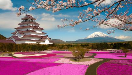 Tour Giappone e Redang – Speciale Sposi