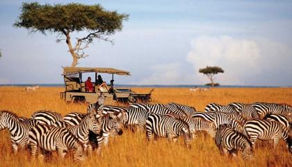 Kenya Jumbo Safari e Mare- Viaggi su misura