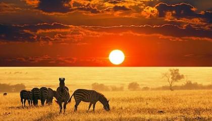 Kenya – Watamu – Viaggi su misura