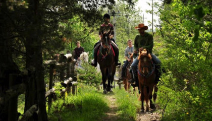 Horse riding in the Alta Murgia National Park